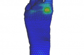Foot friction visualized with FEBio