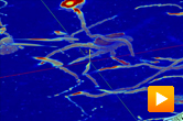 Segmentation of neural pathways with NeuroTracker