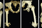 CT imaging of osseointegration