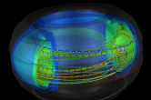 Tokamak fusion visualization in SCIRun