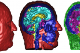 Early segmentation and meshing within SCIRun