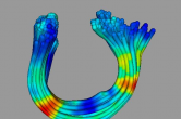 DTI fractional anisotropy with Fiber Viewer