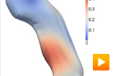 Visualizing diffeomorphic shape trajectories in longitudinal studies